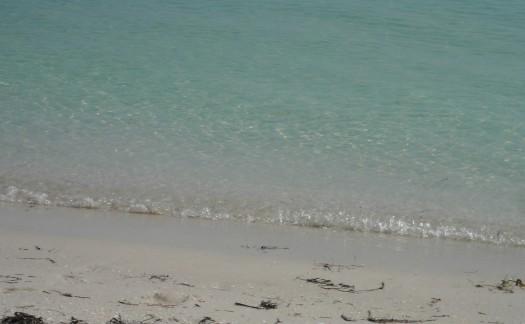 BeachC